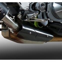 GPR Carbon Schutz Kawasaki Z900 17/