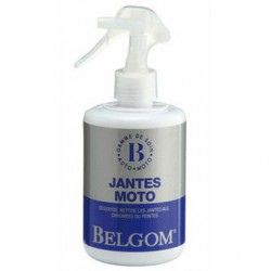 Belgom Jantes