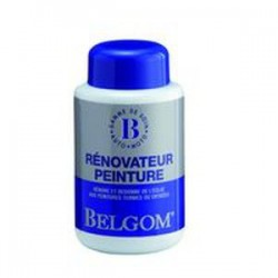 Belgom Paint Renovator